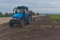Tractor In A Potato Field Royalty Free Stock Photography