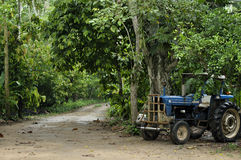 Tractor in jungle Stock Photos