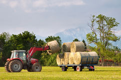 Tractor lifting hay bale on barrow Stock Image