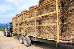 Tractor loaded with hay royalty free stock photo