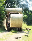 Tractor loaded with hay Royalty Free Stock Photography