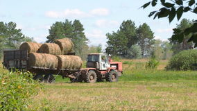 Tractor loading hay. Harvesting hay. Tractor loading hay bales on a trailer stock footage