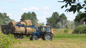 Tractor loading hay. Harvesting hay. Tractor loading hay bales on a trailer stock video footage