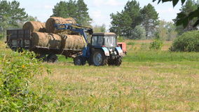 Tractor loading hay. SAMARA REGION, RUSSIA - AUGUST 17, 2017: Harvesting hay. Tractor loading hay bales on a trailer stock footage