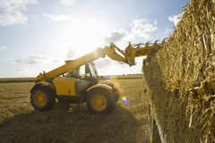 Tractor loading straw bales onto trailer in sunny rural field Stock Photo