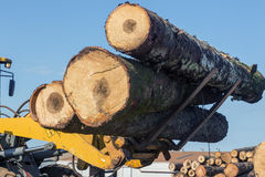 Tractor with logs. In a forest industry Royalty Free Stock Photos