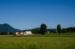 Tractor maaiend hooi Stock Afbeeldingen