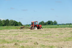 Tractor machine equipment ted dry grass in field Stock Photography