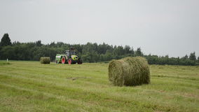 Tractor make straw bale. Agricultural tractor machine making hay bales in autumn field stock video