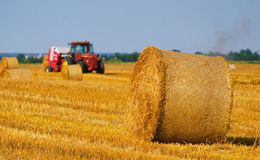 Tractor making hay bales on agricultural field Stock Image