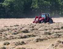 Tractor making hay. In summer field stock photography