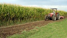 Tractor met Graan (Maïs) Royalty-vrije Stock Afbeelding