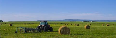 Tractor met rototiller in bijlage op een hooigebied Royalty-vrije Stock Afbeeldingen