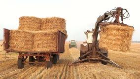 Tractor met vork die grabber hooiblokken vouwen stock footage