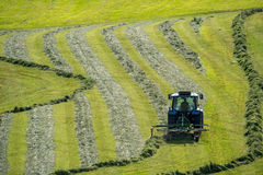 The tractor moving the grass on the field Stock Photo
