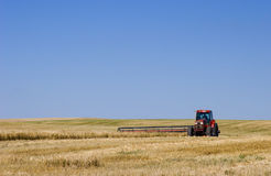Tractor and Mower. A red tractor and mower cuts golden wheat under a bright blue Alberta sky Royalty Free Stock Images