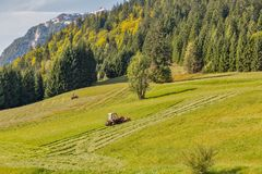 Tractor mowing grass on an alpine lawn royalty free stock photo