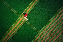 Tractor mowing green field. Aerial top drone view. stock photos