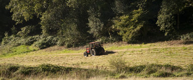 Tractor mowing the meadow Royalty Free Stock Photo