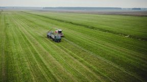 Tractor mows the grass on a green field aerial view stock photography