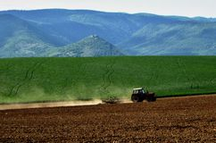 Tractor op gebied Stock Afbeeldingen