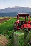 Tractor op het gebied Stock Foto