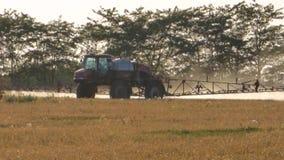 Tractor op het gebied stock footage