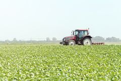 Tractor op het groene gebied Landbouwmachine stock foto's