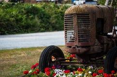 Tractor oxidado viejo con el macizo de flores Foto de archivo