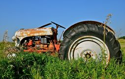Tractor Parked in Long Grass. An old vintage tractor is parked in the long summer grass Stock Images