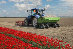 Tractor planting potatoes in holland Royalty Free Stock Images