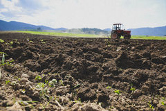Tractor Ploughing on the Field. Red tractor on the Field Royalty Free Stock Photography