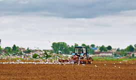 The tractor ploughs an agricultural field Stock Photography