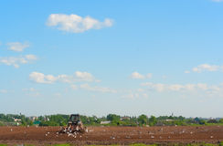 The tractor ploughs a spring field Royalty Free Stock Photography