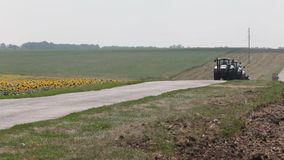 Tractor plow drill driving field of sunflowers Royalty Free Stock Image