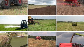 Tractor plow spray field, cut grass, harvest wheat. Collage stock video