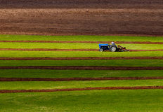 Tractor Plowing Competitor Field Sun Stock Photos