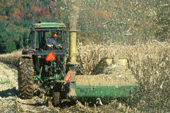 Tractor plowing corn fields Stock Images