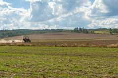 Tractor plowing in field. Royalty Free Stock Photo