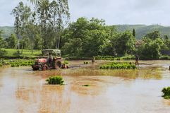 Tractor plowing paddy fields before planting rice royalty free stock photography