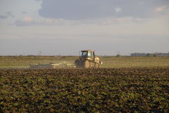 Tractor plowing plow the field. Tilling the soil in the fall after harvest. The end of the season Stock Images