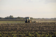 Tractor plowing plow the field. Tilling the soil in the fall after harvest. The end of the season Stock Photos