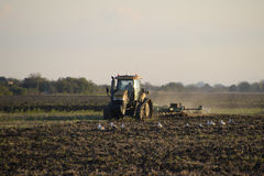 Tractor plowing plow the field. Tilling the soil in the fall after harvest. The end of the season Stock Image