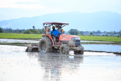 Tractor plowing a rice field in Chiang Mai, Thailand on August 0 Stock Photos