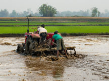 Tractor plowing a rice field in Chitvan, Nepal Stock Photography