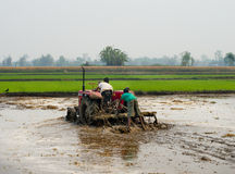 Tractor plowing a rice field in Chitvan, Nepal Stock Photo
