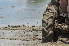 Tractor are Plowing in Rice Field Royalty Free Stock Photos