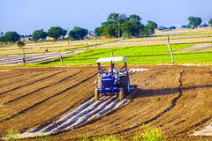 Tractor plows the field Royalty Free Stock Image