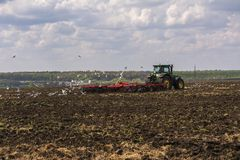 Tractor plows the field. A flock of birds circling over the field.  royalty free stock photo