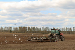 The tractor plows the field in the spring.  Royalty Free Stock Photography